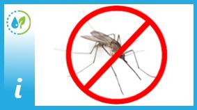 komar.jpeg